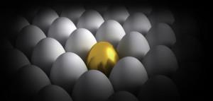 Startup Hiring Different Egg